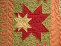 Feathered Star Quilting Detail_kma